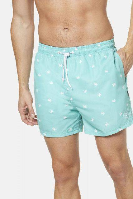 Swim trunks in mint